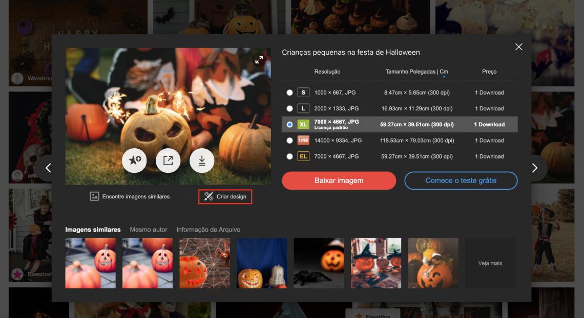 Coleções de fotos, ilustrações e vídeos para todos os tipos de projetos de Halloween