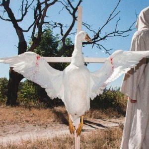 Bird in Flight и Depositphotos на ГогольFest 2015