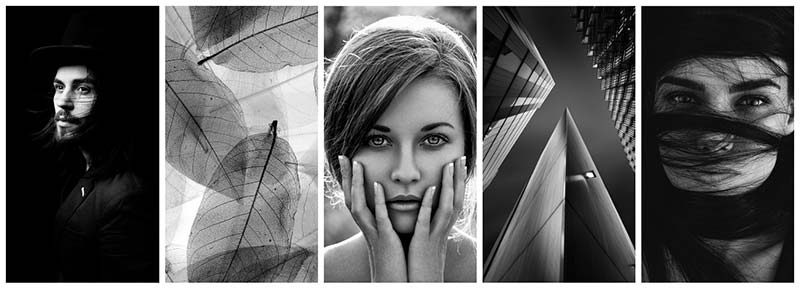 black and white photography featured collection depositphotos