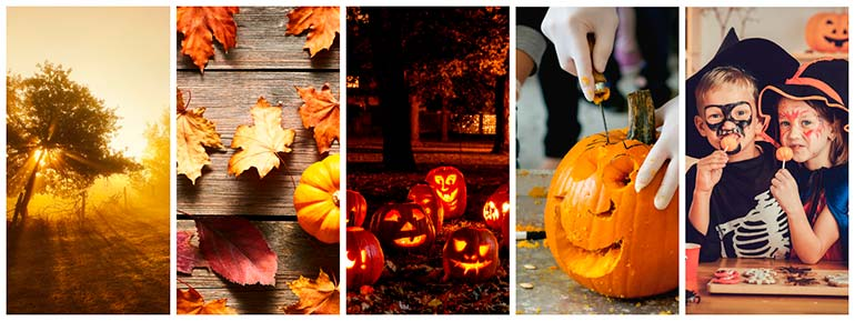 fall and halloween featured collection halloween photos