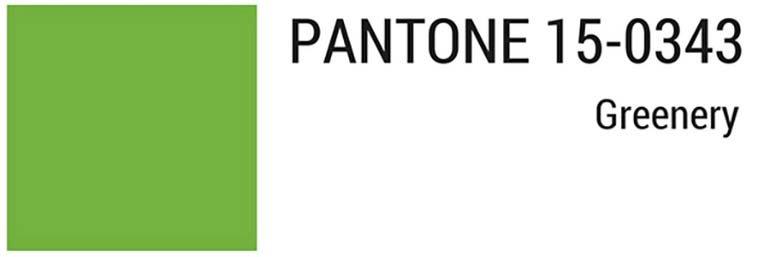 pantone colors 5
