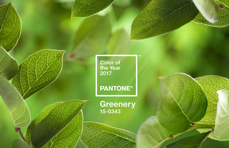 3066350 inline 14 pantone announces the 2017 color of the year greenery