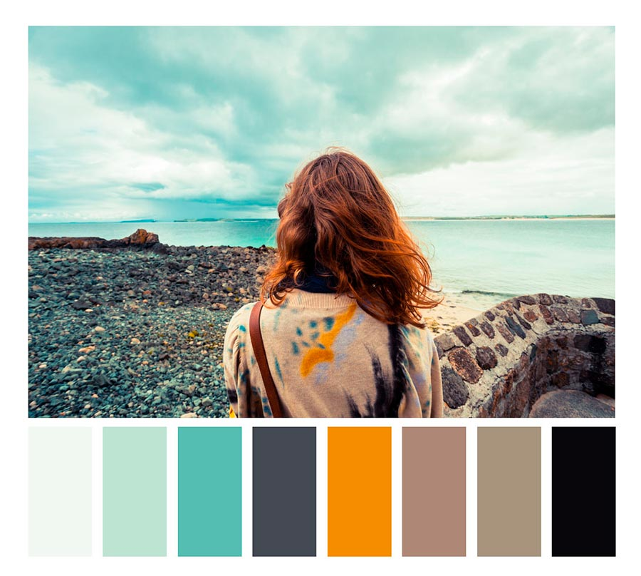 photography color palette