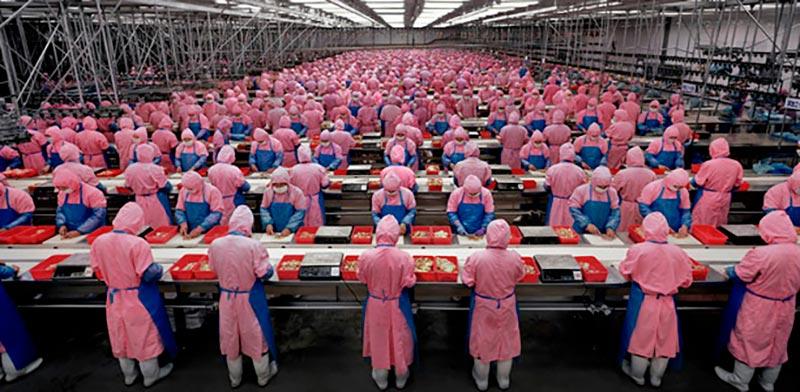 «Индустриальные Пейзажи» (Manufactured landscapes), 2006 г