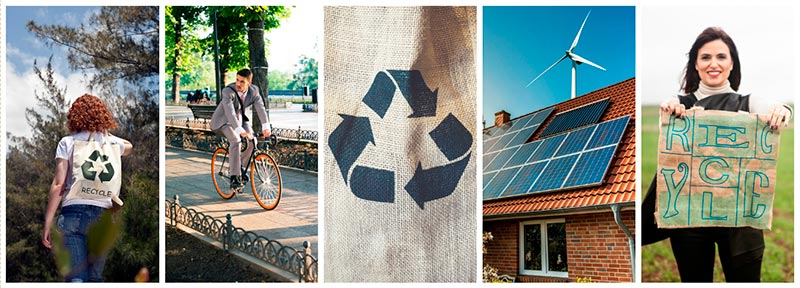 going green sustainable living featured collection