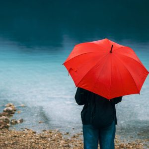 Тематическая коллекция: Дождливые дни, уютные вечера