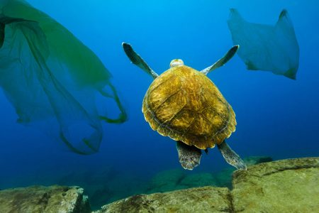 загрязнение-океанов
