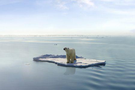 Фотоколлекция: глобальное потепление