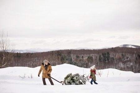 Фотоколлекция: праздник к нам приходит