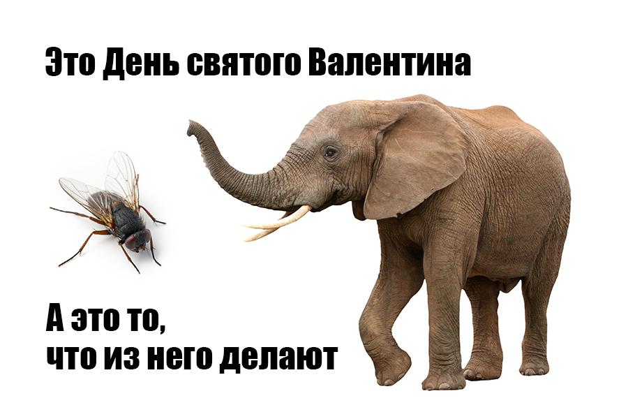 Ru Memes 07