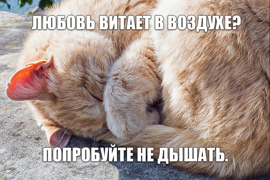 Ru Memes 12