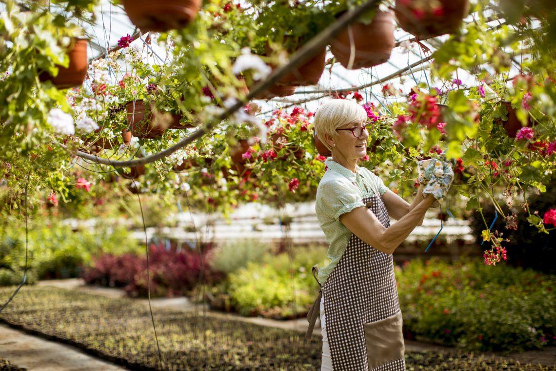 пожилая женщина работает в саду фото