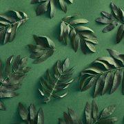 Как применять принципы экологического маркетинга в бизнесе