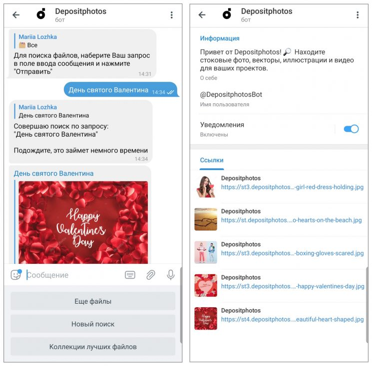 Depositphotos Bot screenshoot 3