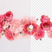 Удаляйте фон изображений в один клик с помощью бесплатного инструмента от Depositphotos