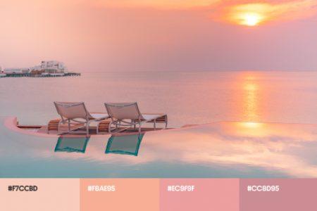 Летние цветовые тренды 2021: яркие палитры и тематические фотоколлекции