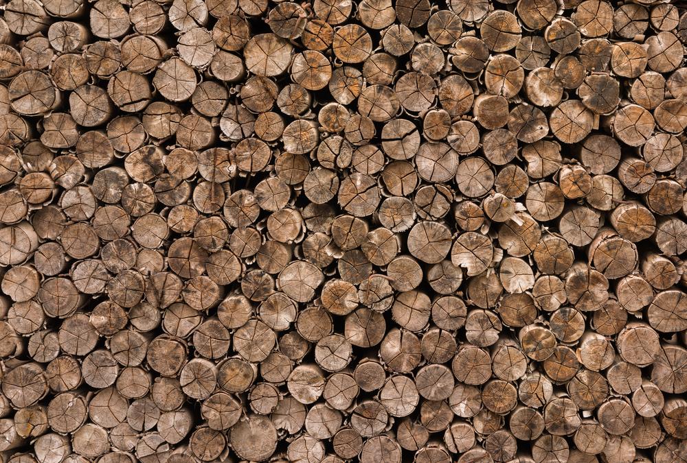 Фото дерев'яні зрізи