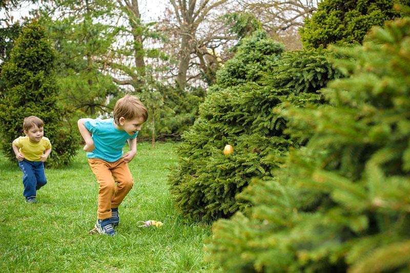 Фото хлопчик збирає крашанки