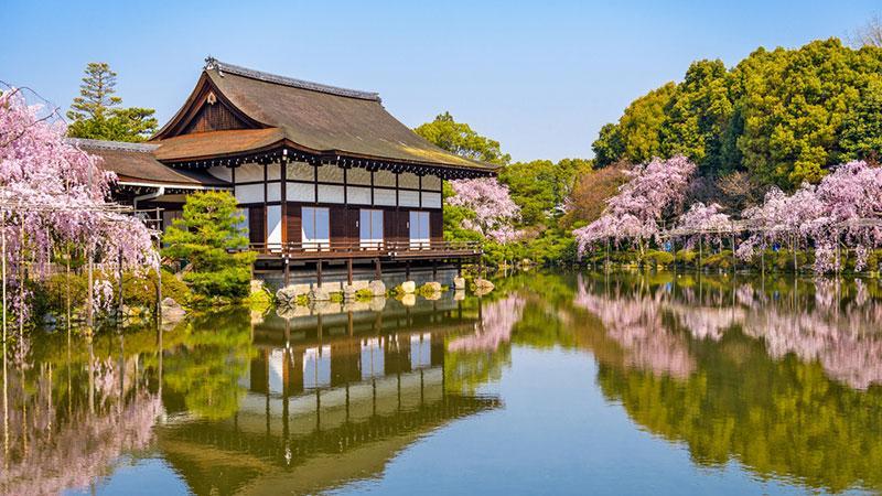 Фото озеро і будинок біля квітучої сакури