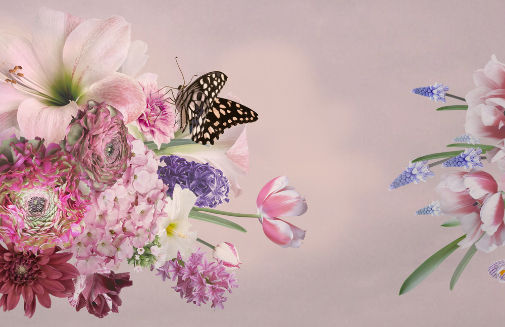 Ілюстрація квіти і метелик