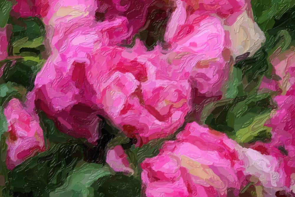 Картина рожеві квіти