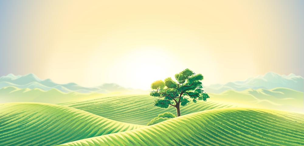 Ілюстрація зелені поля і дерево