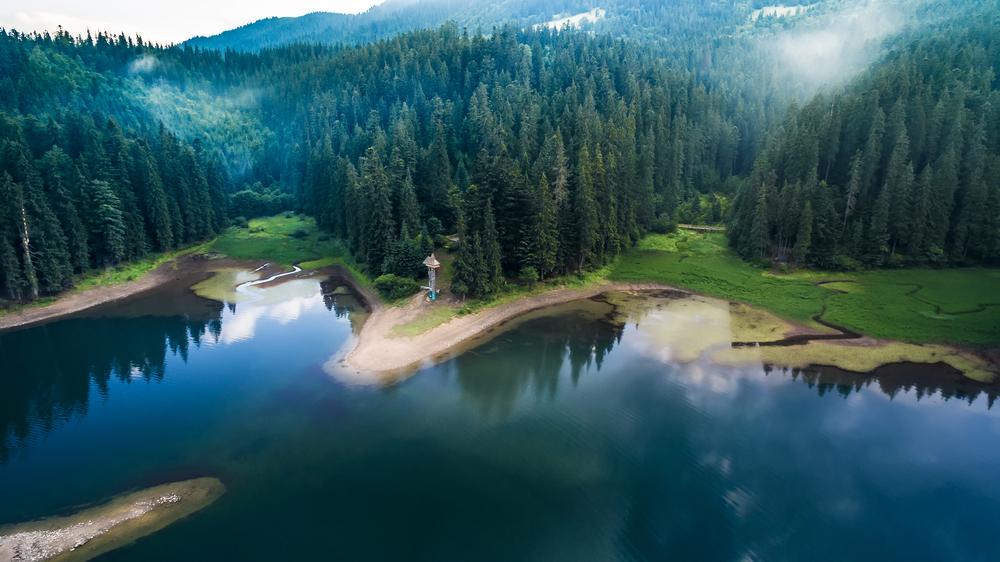 Фото озеро Синевир Карпати Україна