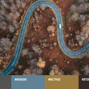 Осінні трендові кольори 2021: креативні палітри й тематичні колекції для сезонних проєктів
