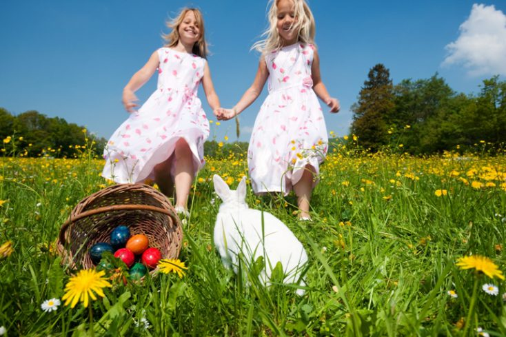 Easter bunny on a beautiful © Depositphotos