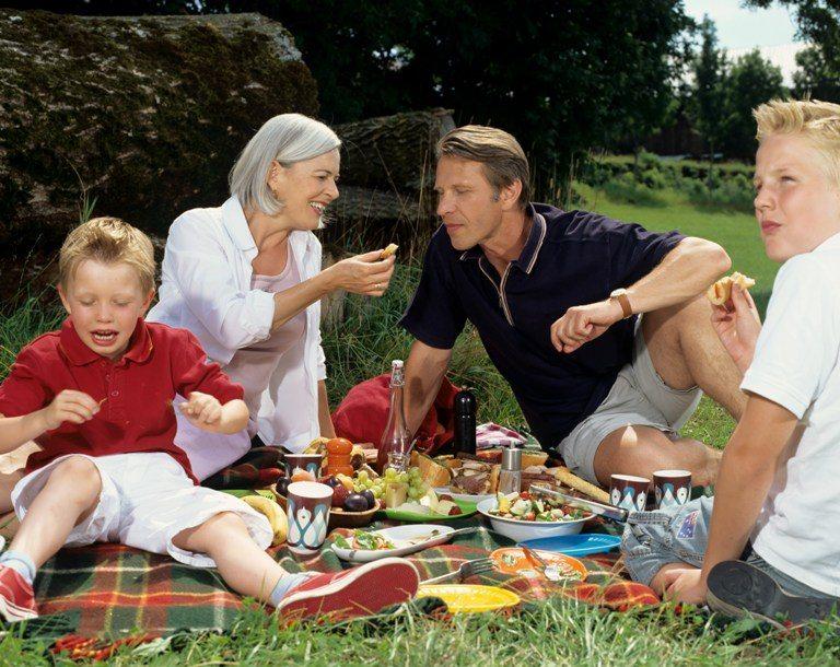 Family enjoying picnic meal. © Depositphotos