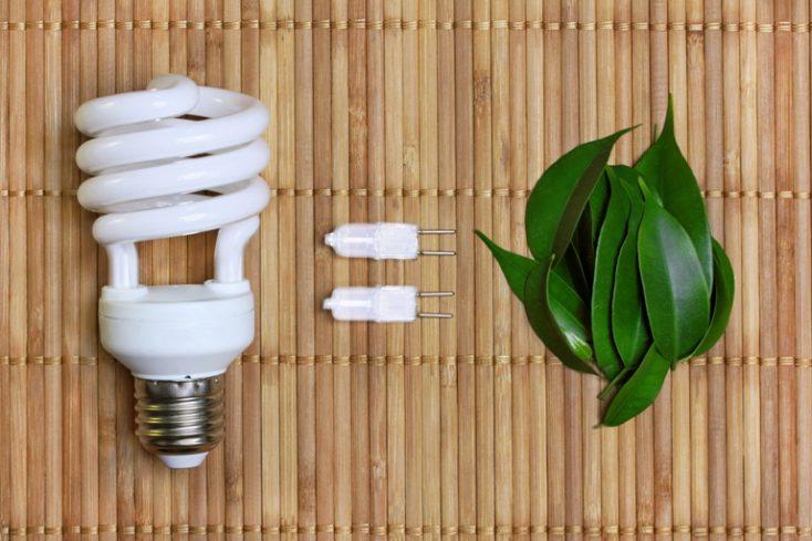 Eco energy concept with light bulb © Depositphotos
