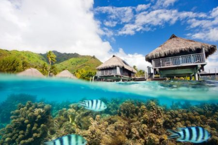 Moorea landscape | Stock Photo © shalamov