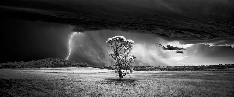 monochrome photographer of the year