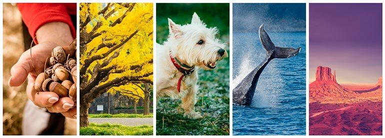 featured collection colorful images color spectrum