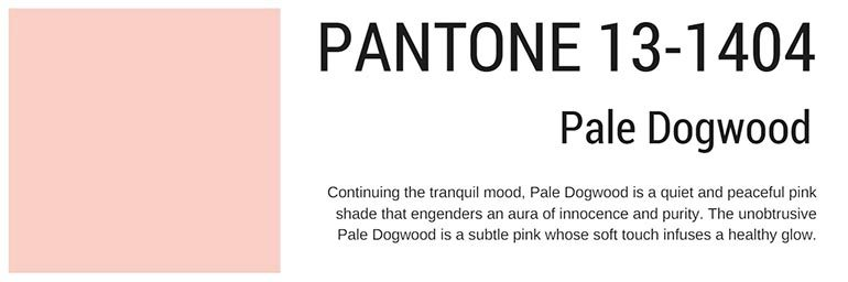 pantone colors spring 2017 pale dogwood