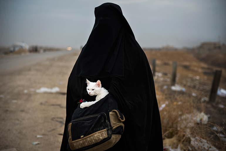 14 november 2016 a woman fleeing mosul iraq