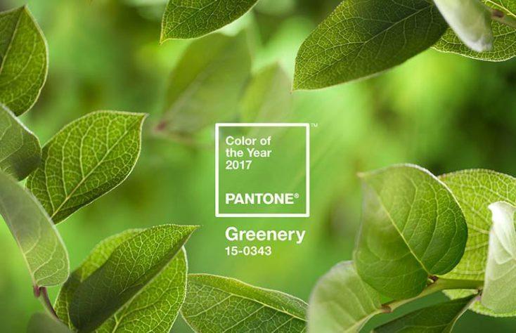 """Главный цвет 2017 по версии Panton: """"свежая зелень"""""""