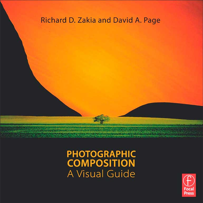 books for photographers photographic composition a visual guide