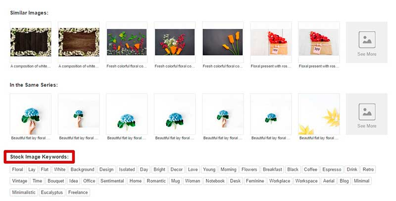 stock photography image search tips 2