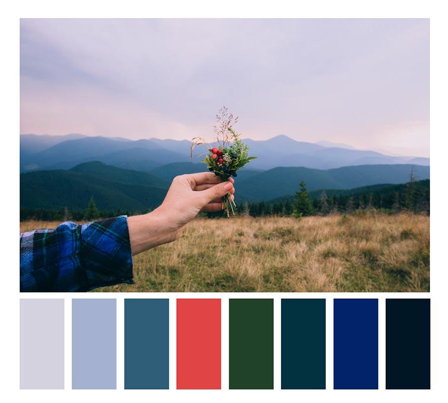photography color palette