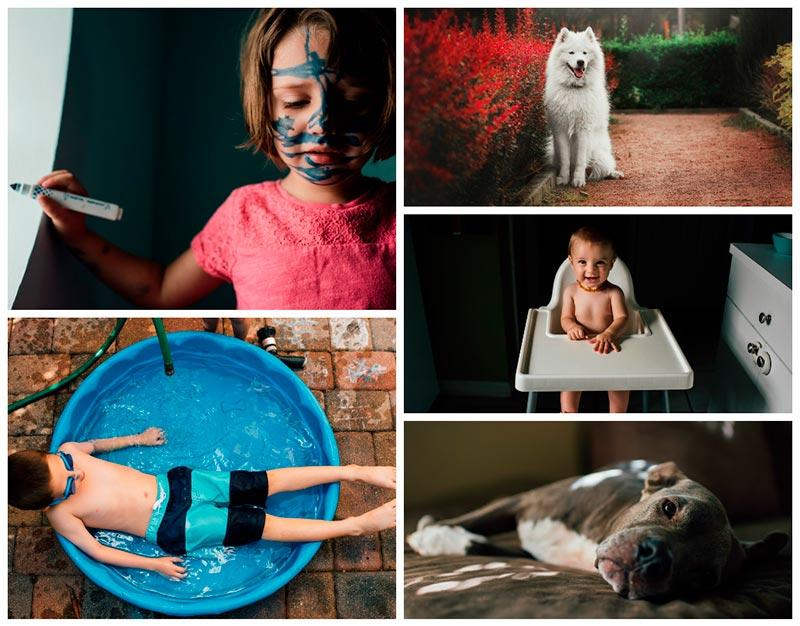 kids and dogs collage