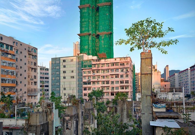 Wild Concrete #57, Hong Kong, 2014.