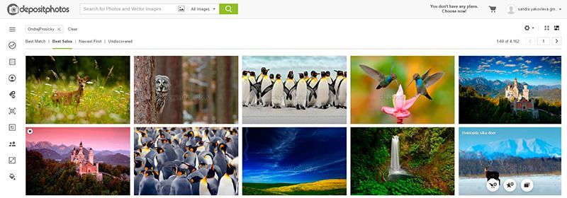 improve stock photography portfolio increase sales 5