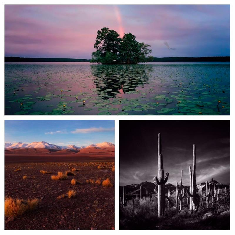 iphone photography award winners nature category