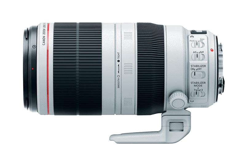 Canon 100 400mm type II wildlife photography gear essentials