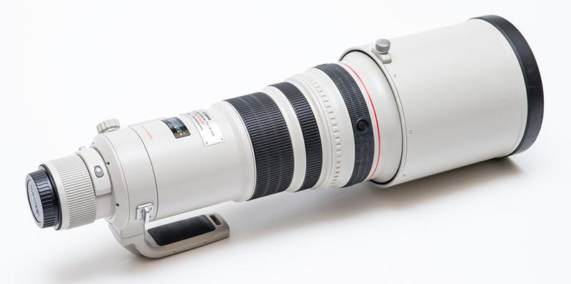 Canon 500mm f4 wildlife photography essentials