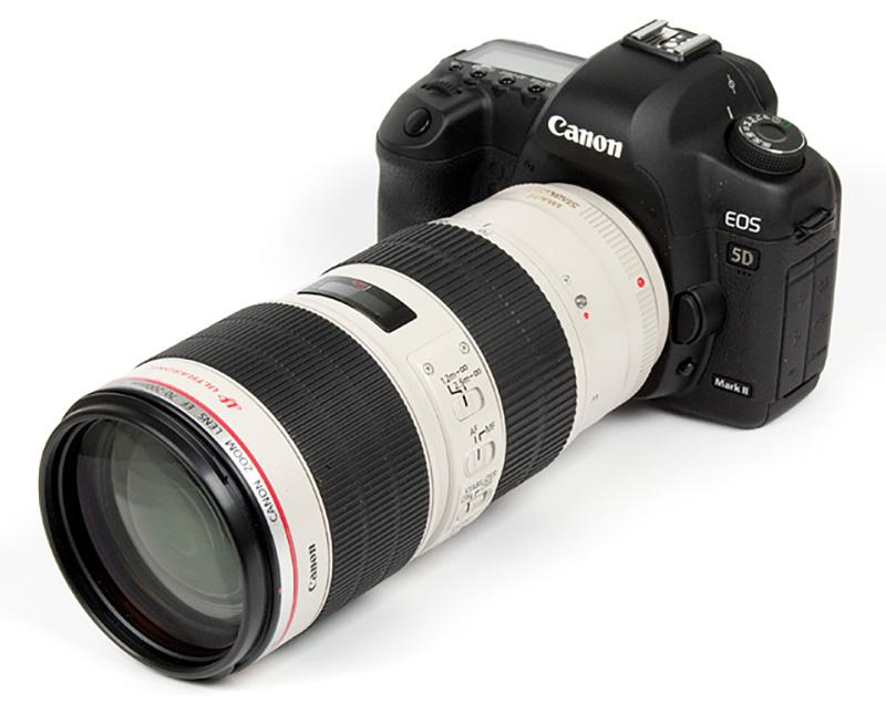 Canon-70-200mm-type-II-wildlife-photography-gear-essentials