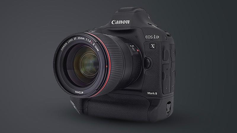 Canon EOS 1DX Mark II wildlife photography equipment