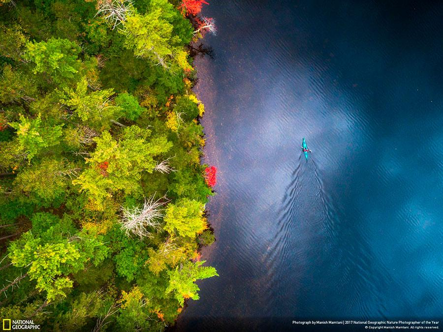 week 5 national geographic nature photographer of the year 2017 3