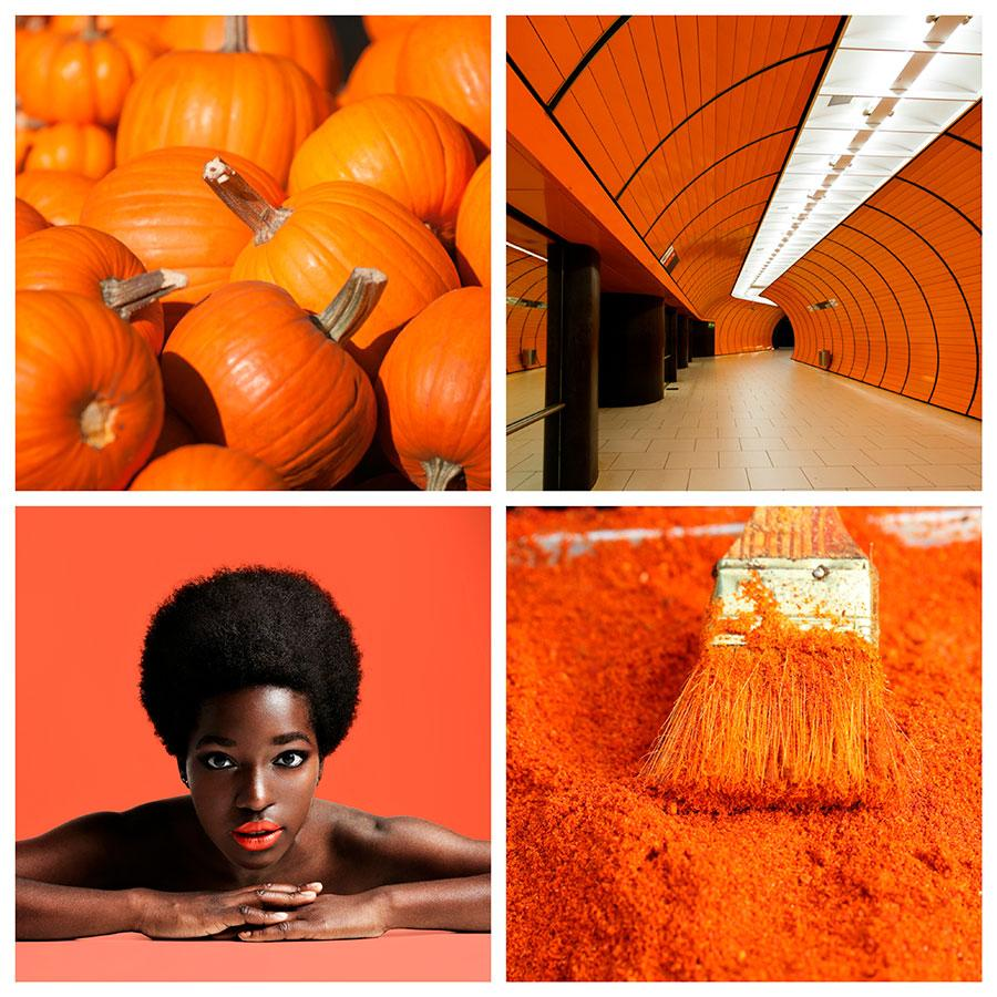 search image by color orange